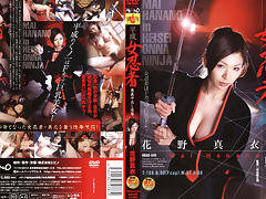 Heisei Onna Ninja