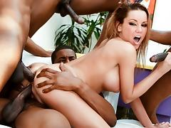 All, Anal, Big Tits, College, Gangbang, Interracial