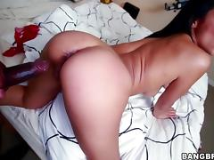 All, Big Cock, Black, Doggystyle, Interracial, Penis