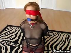 Asshole, Asshole, BDSM, Blindfolded, Cute, Fetish