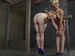 Two blonde bitches eat each other's twat while being tied up