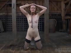 Maledom, BDSM, Bondage, Fetish, Game, Slave