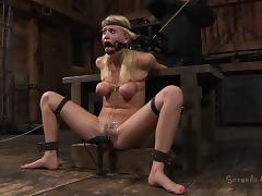 All, Amateur, BDSM, Blonde, Blowjob, Brutal