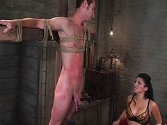 All, Bondage, Bound, Couple, Domination, Femdom