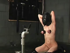 Major tit pain for the hooded girl