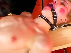 Skinny girl in ball gag must suck dick