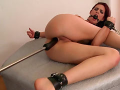 Chained, Ass, BDSM, Bound, Brunette, Dildo