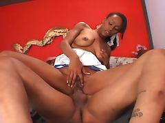 Ebony cheerleaders aleia tyler loves cock