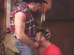 Cowboys in the Barn