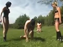 Tug of war and ballbusting