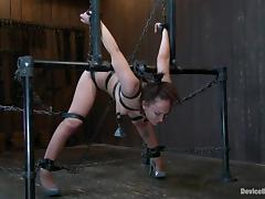 All, BDSM, Bondage, Brunette, MILF, Vibrator