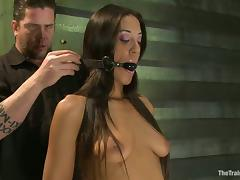 Lyla Storm gets tortured and enjoys various toys in her amazing holes porn video