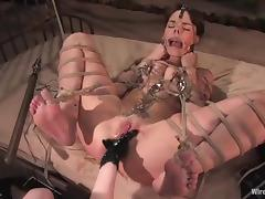 Poor honey gets bondaged, twitched and wired