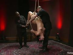 All, BDSM, Bondage, Bound, Tied Up, Hogtied