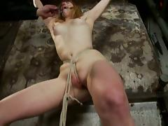 Cute redhead siren Mallory Mallone is being humiliated pretty hard