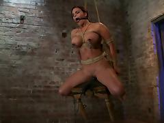 Mouse Traps on Mackenzee Pierce's Nipples While She's Tied and Toyed