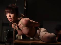 Pretty Marica Hase gets humiliated in bondage video