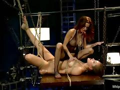 Horny babe is being hogtied and suspsended
