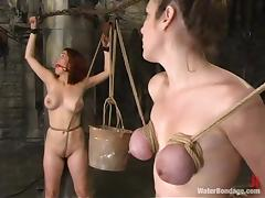 Three busty bitches get chained and drowned in a hot BDSM action