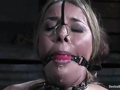 Bounded girls swept off one's feet without exception others pussies and get toyed