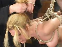 Flavourful blond siren Jenni Lee is secondary to pointed distress