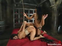 Gia Jordan is dominating over Sydnee Capri with reference to BDSM