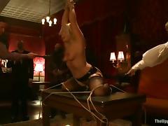 All, BDSM, Bondage, Fucking, Humiliation