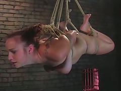 All, BDSM, Big Tits, Bondage, Boobs, Bound