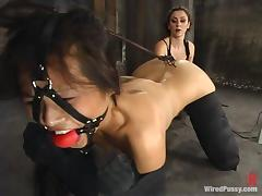 Asian Nyomi Zen Tortured coupled with Toyed in Bondage Fairy Sheet