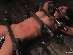 All, Asian, BDSM, Bondage, Fetish, Pussy