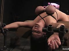 All, BDSM, Bondage, Fetish, Orgasm, Lady