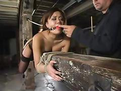 All, Asian, BDSM, Bondage, Fucking, Machine