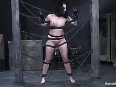 Pussylips, BDSM, Bondage, Fetish, Pussy, Labia