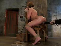 Gorgeous Amy Brooke blows a dick and gets toyed in BDSM vid porn video