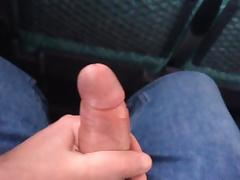 Bus, Amateur, Big Cock, Bus, Exhibitionists, Flashing